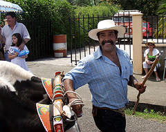Costa Rican boyero - Ox Cart Driver at Parade